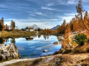 NatureBlog2